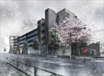SAKURA-project